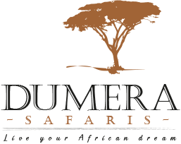 Dumera Safaris